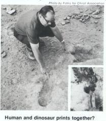 dinosaur amp  human footprints